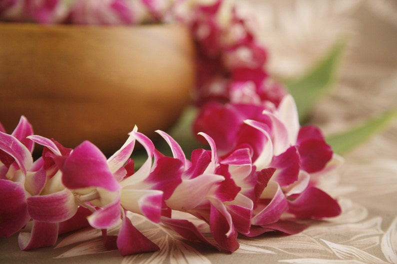Fresh Lei Orchid Lei from Hawaii  Hawaiian Lei  image 0