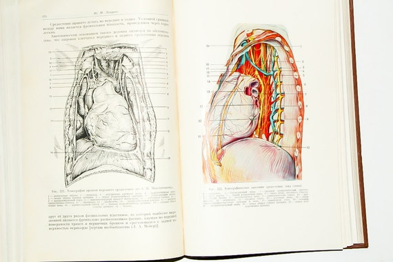 Jahrgang Chirurgie medizinische Buch medizinischen | Etsy