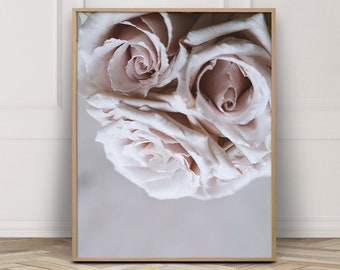 Pink Flower Photography - Floral Poster - Blush Pink Wall Art - Wall Art Master Bedroom - Modern Botanical Print - Roses Photography .