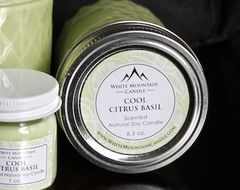Cool Citrus Basil Scented 6.5 oz. Soy Candle