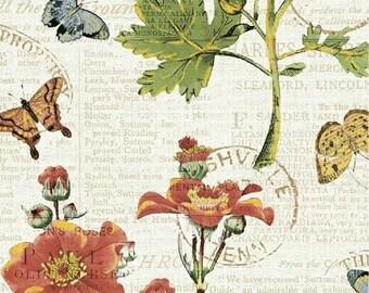 1/2 yd Bookshelf Botanicals by Katie Pertiet for Whistler Studios & Windham Fabrics 43384M-1