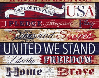 "Stars & Stripes Pledge of Allegiance 24"" Fabric Panel by Timeless Treasures C7044-USA"
