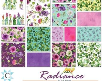Radiance Fat Quarter Bundle // Clothworks FQ0269