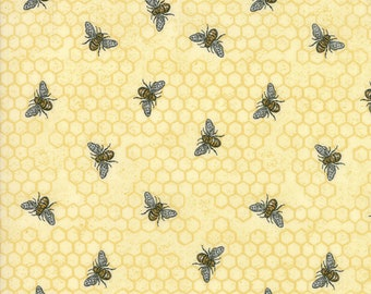 1/2 yd Bee Joyful Busy Bee by Deb Stain for Moda Fabrics 19874 12