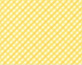 1/2 yd Acreage Gingham by Shannon Gillman Orr for Moda Fabrics 45507 13