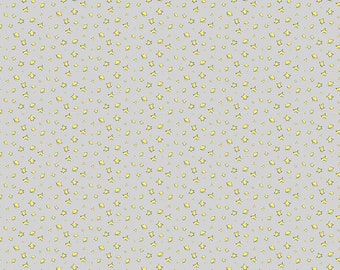 1/2 yd The Little Prince Stars by Riley Blake C6793-GRAY