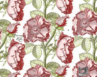 1/2 yd Hatter's Tea Party Antique Rose Fabric by Janet Wecker Frisch for Quilting Treasures 26150 -P