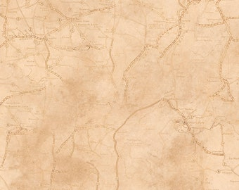 1/2 yd Rule the Road Map Fabric by Jeff Wack for Quilting Treasures 26690 -E