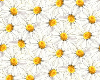 1/2 yd Morning Glory Daisies by Quilter's Palette 13645 WHITE