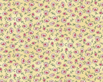 1/2 yd Roam Sweet Home Ditsy Flowers by Kris Lammers for Maywood Studio MAS8225-S