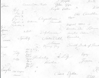 Memoire a Paris Script Fabric // Lecien 820819 10 by the HALF YARD