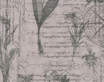 1/2 yd Quill Botanical Sketchbook by 3 Sisters for Moda Fabrics 44150 12