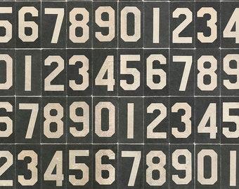 Tim Holtz Monochrome Numbers Fabric // FreeSpirit PWTH063.BLACK by the Half Yard