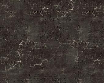 Tim Holtz Abandoned Cracked Shadow Fabric // FreeSpirit PWTH128.BLACK by the Half Yard