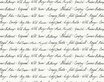 Midsummer Wildflower Script Fabric // Windham  52322-2 Linen by the Half Yard