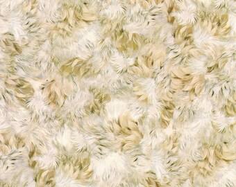 Be Pawsitive Fur Fabric // Robert Kaufman Fabrics ABKD 18350 14 by the HALF YARD