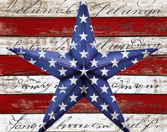 """Home of the Brave Patriotic Star 23"""" Panel // Timeless Treasures C8362-USA"""