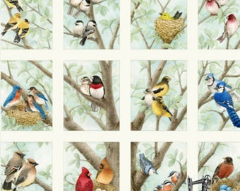 """Beautiful Birds 24""""x 22"""" Quilt Panel by Tracy Lizotte for Elizabeth's Studio 4309 CREAM"""