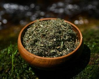 Organic Mugwort   Artemisia Vulgaris