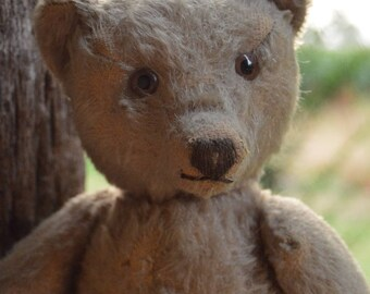 Adorable 1950s Steiff Teddy Bear with Cute Face, Steiff Button, Teddy Bear, Mohair, German