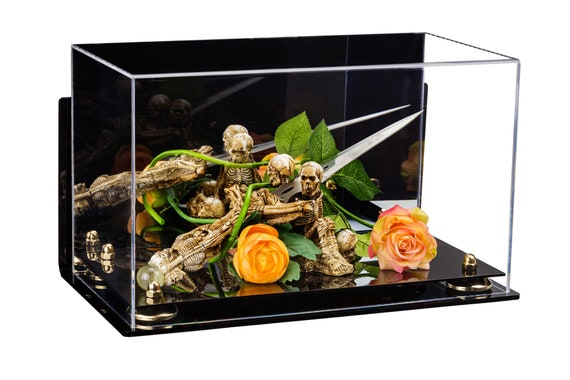 Versatile Deluxe Acrylic Display Case Small Rectangle Box with Risers Mirror and Wall Mount 9.5 x 6 x 6.5 A005