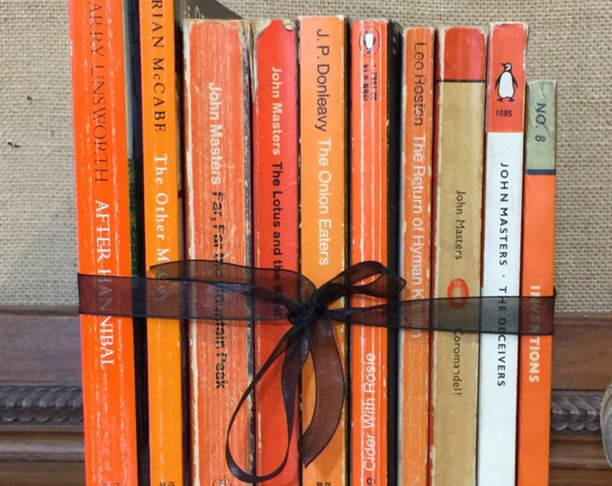 PENGUIN Paperback Book Collection - Instant Book Stack - Interior Design Shelf Staging - Orange Home Decor - Custom Sourced Vintage Books