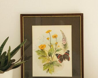 Vintage Framed Botanical Print with Butterly | Yellow Flowers and Burnt Orange Butterfly Print Colour Book Plate by John Evans