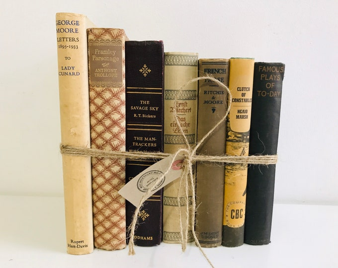 Decorative Books in Cream Tan Brown Blue Vintage Book Collection Earth Tone Books Old Books Decoration Neutral Rustic Home Decor