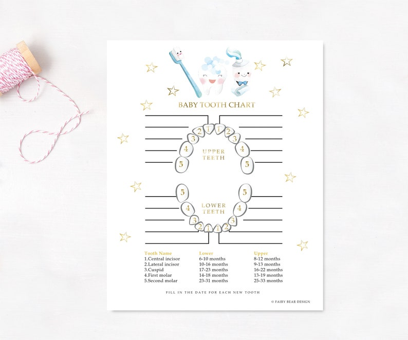 photograph about Baby Teeth Chart Printable titled PRINTABLE - Little one Teeth Chart - Bubble Teeth Fairy Chart - Kid Keepsake - Youngster Teeth - Teeth Information - Teeth Chart