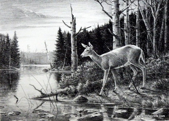Les Kouba Surveying his Domain Signed and Numbered Moose Print 19.25 x 12.5