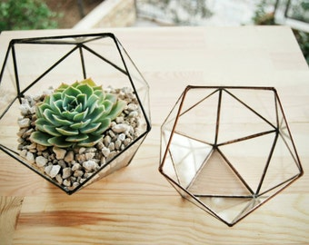 Small Geometric Glass Terrarium, Handmade Glass Box, Cactus Pod, Modern Planter, Indoor Gardening, Succulent Planter, Terrarium Container