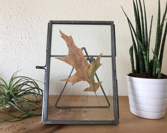 PRESSED LEAVES / Handmade Pressed Leaf Single / Framed / In Gold  Frame / 4x6 Frame