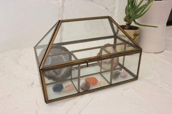 Large Glass and Brass Curio Display Case Terrarium