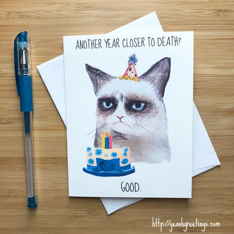 Funny Angry Cat Birthday Card Lover Gift Internet Memes Lady Dogs And Cats Happy