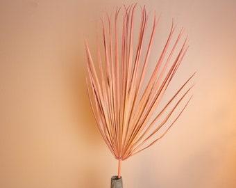 Dried Palm Leaf - Chamaerops - Pale pink