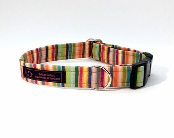 Stripes on Orange dog collar, made in Scotland, luxury dog collar, Dogs, Pets,