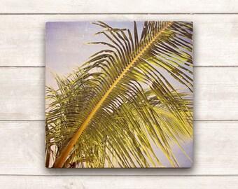 Beach Decor; Beach Wood Signs; Beach Wooden Signs; Beach Signs; Beach Signs Decor; Beach Decor Coastal; Close-up Palm Photo Art