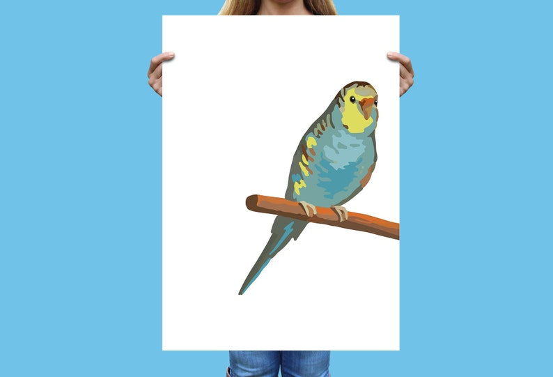 Paint by Number style Budgie Print, Vintage Parakeet Illustration, Bird  Print, Instant Download, Printable budgerigar Bird Wall Decor