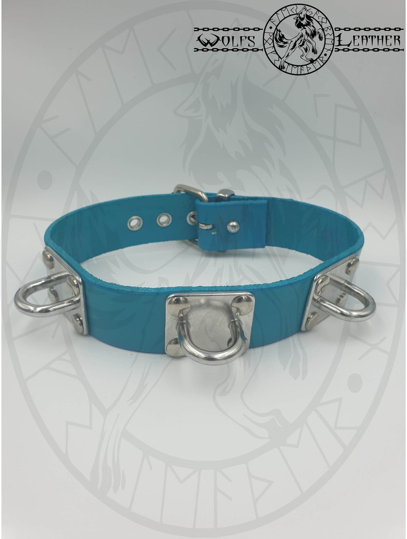 teal 3 restraint shackle  collar