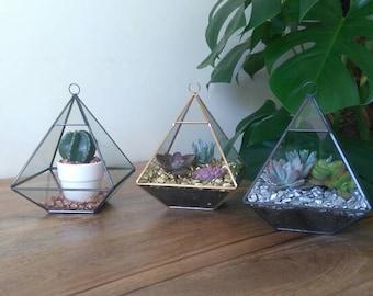 Geometric Glass Terrarium Full Kit