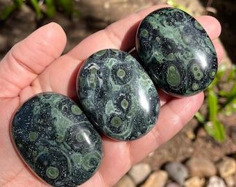Kambaba Jasper Palm Stone, Kambaba Pocket Stones, Crocodile Jasper Stone // You Choose