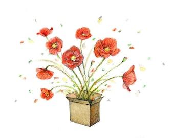 Poppies box - gardening classes