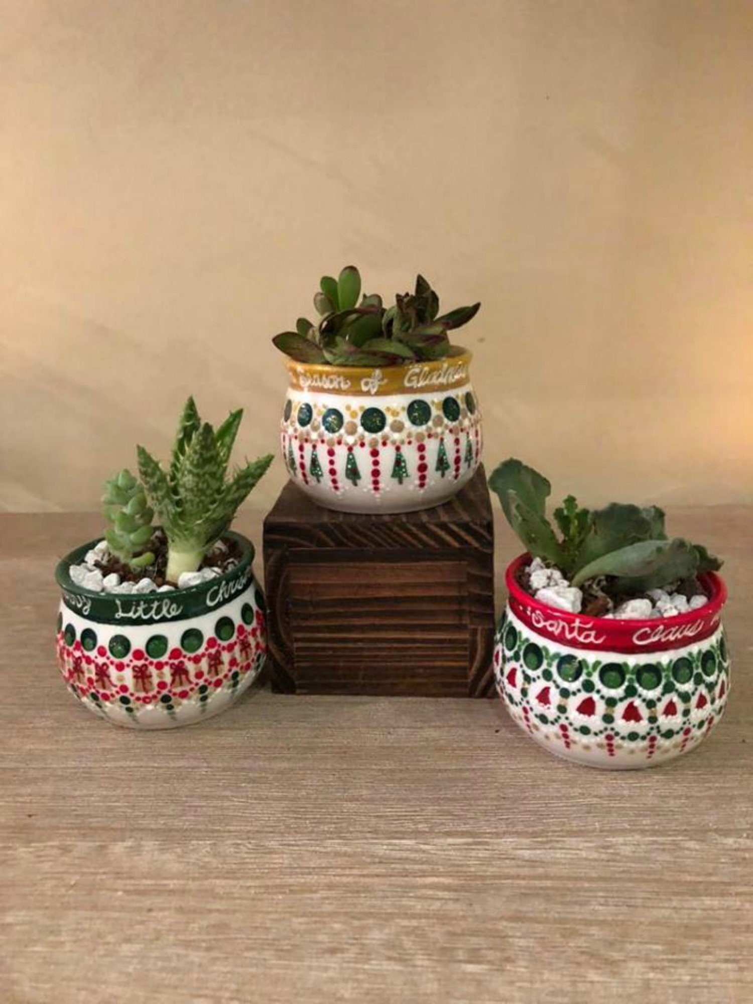 Succulent Planters For Christmas Succulent Pot Christmas Indoor
