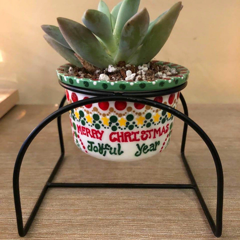 Christmas Succulent Planters.Christmas Planter With Succulent Succulent Pots Ceramic