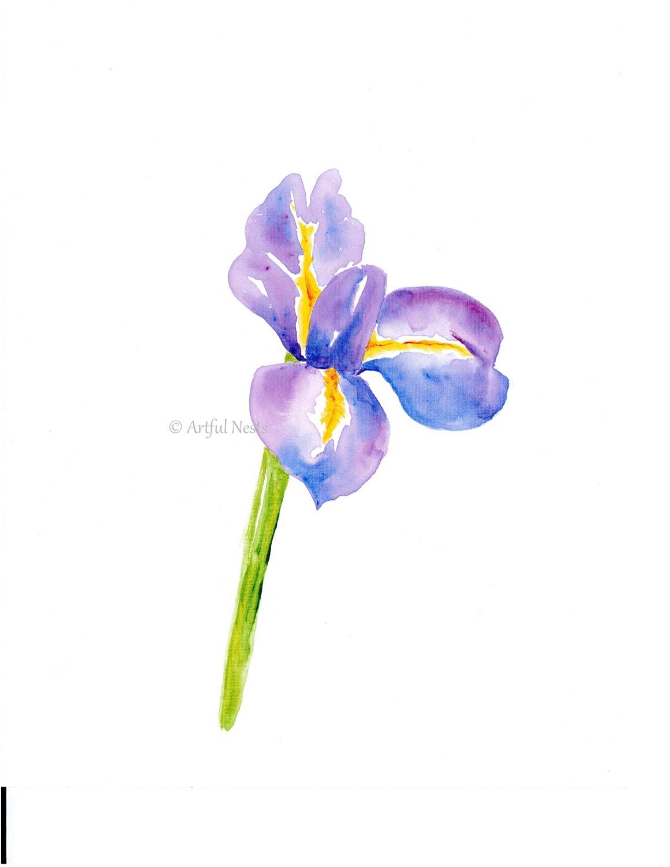 Iris Print Birth Month Flower Art With Personalized Birth Etsy