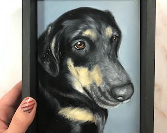 "5""x7"" Custom Oil Pet Portrait"