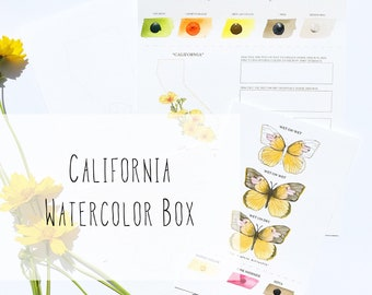 California Watercolor Art Box with State Flower (California Poppy) and State Insect (Dogface Butterfly) - PRE-ORDER