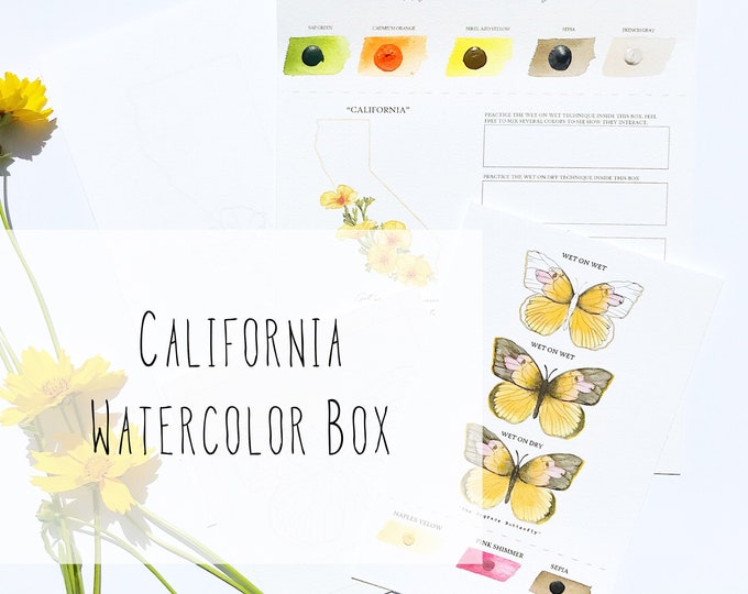 Featured listing image: California Watercolor Art Box with State Flower (California Poppy) and State Insect (Dogface Butterfly) - PRE-ORDER