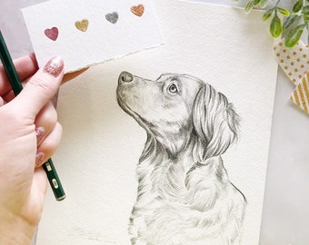 "7""x 9"" Original Custom Pencil Pet Portrait Illustration"