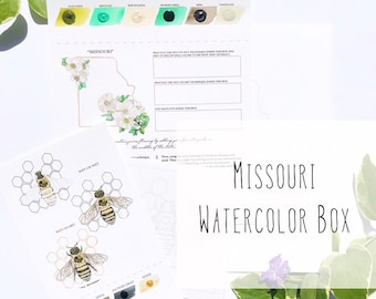 Missouri Watercolor Art Box with State Flower (White Hawthorn Blossom) and State Insect (Honeybee) - PRE-ORDER